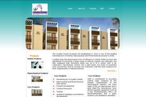 Website Designers, India Website Design, Award Winning Website Designer, Website Design Experts